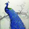 Картина-раскраска по номерам 40*50 GX 8251 Прекрасный павлин