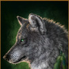 """Набор для рукоделия, в технике Алмазная (стразовая) мозаика """"Волк"""""""