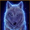 """Набор для рукоделия, в технике Алмазная (стразовая) мозаика """"Звёздная волчица"""""""