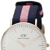 часы Daniel Wellington Women's 0505DW Winchester Stainless Steel Watch With Striped Nylon Band