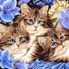 """РЗ EХ5689 """"Три котенка"""", 30х40 см Артикул890-260"""