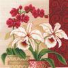И-01 Изящные орхидеи