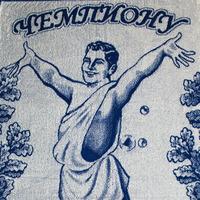Полотенце махровое банное Чемпиону по банному спорту 70x140 см