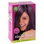 Краска для волос COLOR MATE Heir Color (тон 9.5, красное дерево)