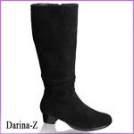 Дарина-Z