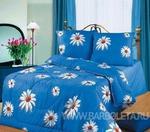Одеяло на Каждый день 200*220
