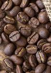 кофе в зернах Эфиопия Иргачиф