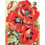 "Картина по номерам оптом ""Яркие маки"": GX9334 (40x50)"