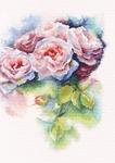 M547 Розовая нега