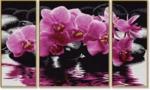 """Раскраска по номерам """"Триптих Орхидеи"""""""