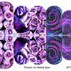 Слайдер-дизайн премиум Цветы ufl115