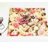 Сушилка для овощей и фруктов САМОБРАНКА 50х50 см.