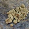 Каменное масло 10 гр.