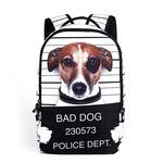 Школьный рюкзак - A1011-1