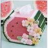 Набор для вышивки на пластиковой канве (коробочка для салфеток) Арбуз