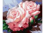 Набор для раскраш.по номерам 058-CG 40х50 Нежные розы