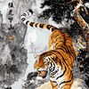 Картина-раскраска по номерам 40*50 GX 4715 Тигр