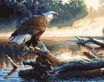 GX6736 Гордый орел