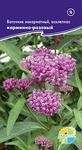 Ваточник инкарнатный, асклепиас карминно-розовый Asclepias incarnate, Многолетник, в наличии 2 пакета