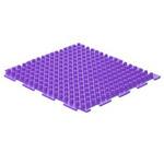 Шипы-фиолетовые