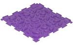 Шишки-фиолетовые