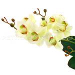 """67152 - Цветок """"Орхидея белая"""" с корнем 43см, желтые стебельки"""