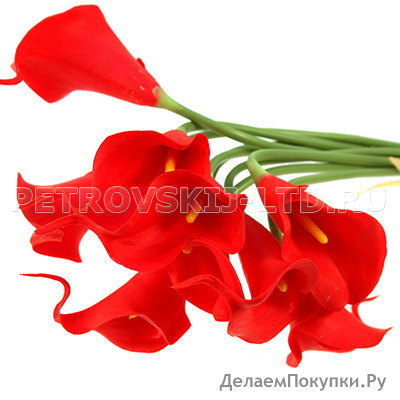 """70979 - Цветок """"Калла красная"""" 30см, букет 9 штук (Китай)"""