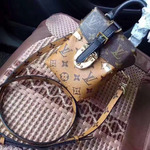 Сумка Louis Vuitton 42999