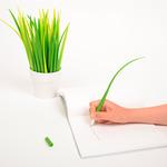 Ручка травинка