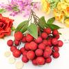 Ветка ягода янмей, упак.1шт (ягоды 20мм-35мм) D290/80