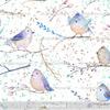 ДЕКАБРЬ Футер Птички на белом (петля с лайкрой)