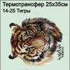 14-25 Термотрансфер Тигры 25х35см