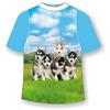 Детская футболка Хаски-няши