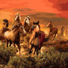 GX21164 Табун лошадей / картина 40х50