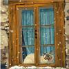GX22053 Кошка на окошке картина 40х50