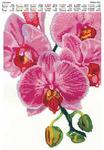 """Схема вышивки бисером """"Орхидея"""""""