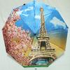 Зонт женский M.N.S