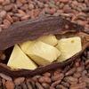 Какао масло нерафинированное ВЕСОВОЕ