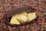 Какао масло нерафинированное х/о ВЕСОВОЕ