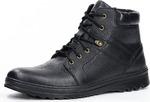 Ботинки мужские арт.420601