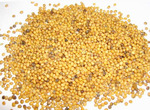 Горчица зерно 100 гр