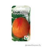 Загадка природы 20шт томат (Сиб сад)