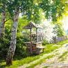 GX21957 Хорошо в деревне летом
