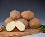 Картофель Хозяюшка 1 кг