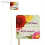 """Табличка для растений """"Астры, гладиолусы""""  20 ШТУК"""