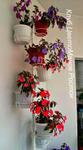 Настенная подставка на 7 горшков Жасмин со съемными держателями