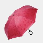 Зонт автоматический Double Red