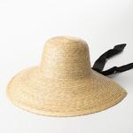 классический элегантный соломенная шляпа