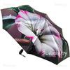 Зонтик из сатина Trust 30471-08