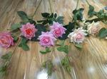 Роза шиповник (2 открытый + 3 закрытых бутона)